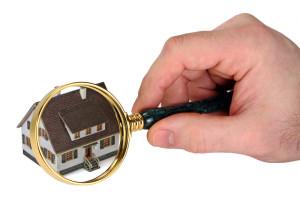 Mustersachverständigenordnung, Richtlinie DIHT, Immobiliensachverständiger